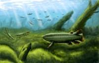 Holoptychius, Tulerpeton and Moythomasia, prehistoric fish of the Devonian period Fine Art Print