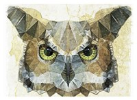 Abstract Owl Fine Art Print