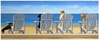 Beach Chair Tails Fine Art Print