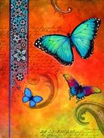 Fluorescent Aqua Butterfly Framed Print