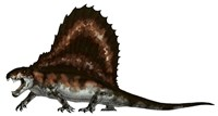 Dimetrodon, a Synapsid that was an Apex Pradator Fine Art Print