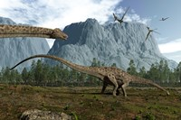 Diplodocus Dinosaurs Graze While Pterodactyls Fly Overhead Fine Art Print