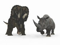 An Adult Nedoceratops Compared to a Modern Adult White Rhinoceros Fine Art Print