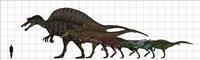 Spinosauridae Size chart Fine Art Print