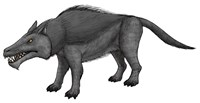 Andrewsarchus, an Ungulate Mammal from the Eocene Epoch Fine Art Print