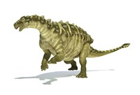 Talarurus Dinosaur on White background Fine Art Print