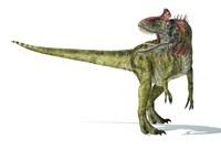 Cryolophosaurus Dinosaur Fine Art Print
