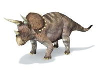 3D Rendering of a Triceratops Dinosaur Fine Art Print