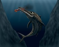 An Ophthalmosaurus Catches a Squid in the Deep Sea Fine Art Print