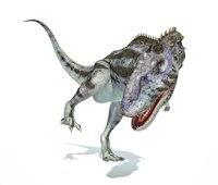 Majungasaurus Dinosaur on White Background Fine Art Print