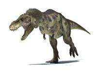 3D Rendering of a Tyrannosaurus Rex Dinosaur Fine Art Print