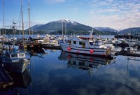 Fishing Boats, Prince Rupert, British Columbia, Canada Fine Art Print