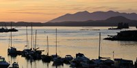 Sunset at Tofino, Harbor, Vancouver Island, British Columbia Fine Art Print