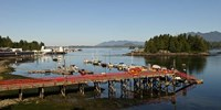 Dock and harbor, Tofino, Vancouver Island, British Columbia Fine Art Print