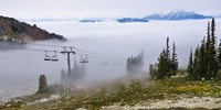 British Columbia, Chairlift on Whistler Mountain Fine Art Print