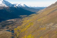 Todagin South Slope Provincial Park, British Columbia Fine Art Print