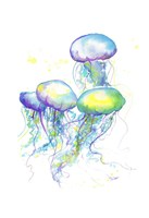 Herd of Jelly Fine Art Print
