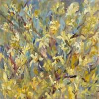 Magnolia Butterfly Fine Art Print