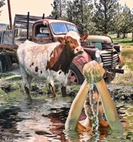 Steer and Old Truck in Terrebonne Fine Art Print