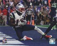 Brandon LaFell Touchdown Super Bowl XLIX Fine Art Print