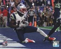 Brandon LaFell Touchdown Super Bowl XLIX Fine Art Print