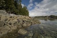 Dicebox Island, Pacific Rim NP, British Columbia Fine Art Print