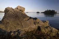 Keith Island, Pacific Rim, British Columbia Fine Art Print