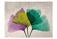 SoHo Polka Ginkos Fine Art Print