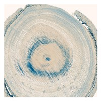 Mineral Rings 6 Fine Art Print