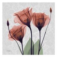 Gentian Marsala Fine Art Print
