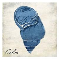 Inspirational Blue Shell I Framed Print