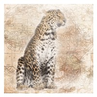 African Animals - Leopard Fine Art Print