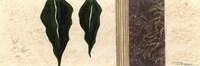 Blades I Framed Print