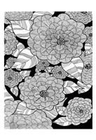 Wild Hydrangeas Fine Art Print