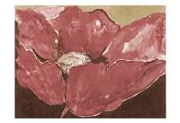 The Marsala Show Fine Art Print