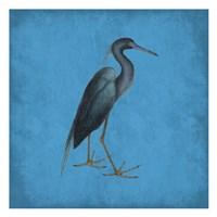 Natural Balance Fine Art Print