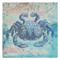 Sea Crab Framed Print