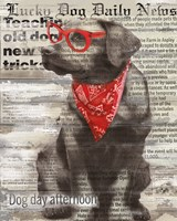 Lucky Dog Fine Art Print