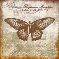 Vintage Butterfly I Ocher Framed Print