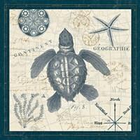 Ocean Life VI Fine Art Print