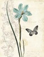 Lila Bleu I Fine Art Print