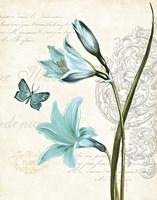 Lila Bleu II Fine Art Print