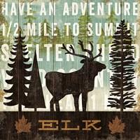 Simple Living Elk Fine Art Print