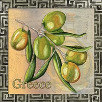 Olive Oil 4 Fine Art Print