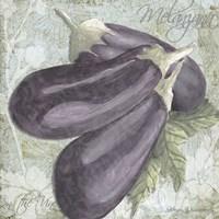 Buon Appetito Eggplant Framed Print