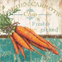 Garden Carrots Fine Art Print