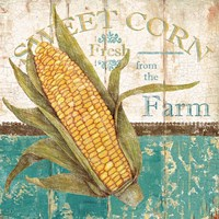 Sweet Corn Fine Art Print