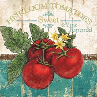 Heirloom Tomatoes Fine Art Print