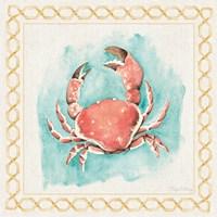 Coastal Mist Crab Border Turquoise Fine Art Print