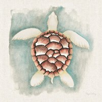 Coastal Mist Sea Turtle Fine Art Print